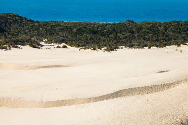 sandhills fraser island